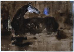 Horse lying in the darkness